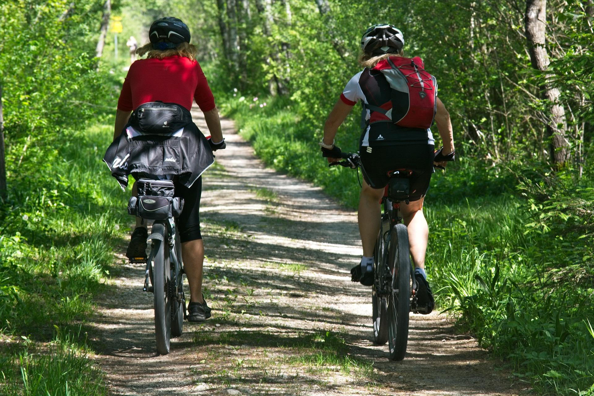 Cycling in North-Limburg